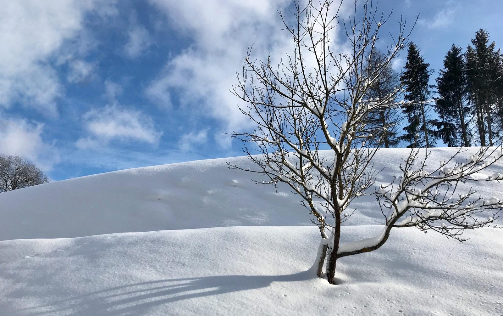 werbeduo winter